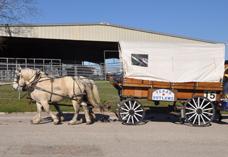 wagon 15