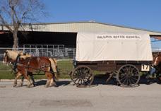 wagon 17
