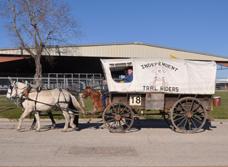 wagon 18