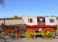 wagon 12 z