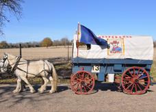 wagon 13 z
