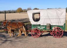 wagon 3 z